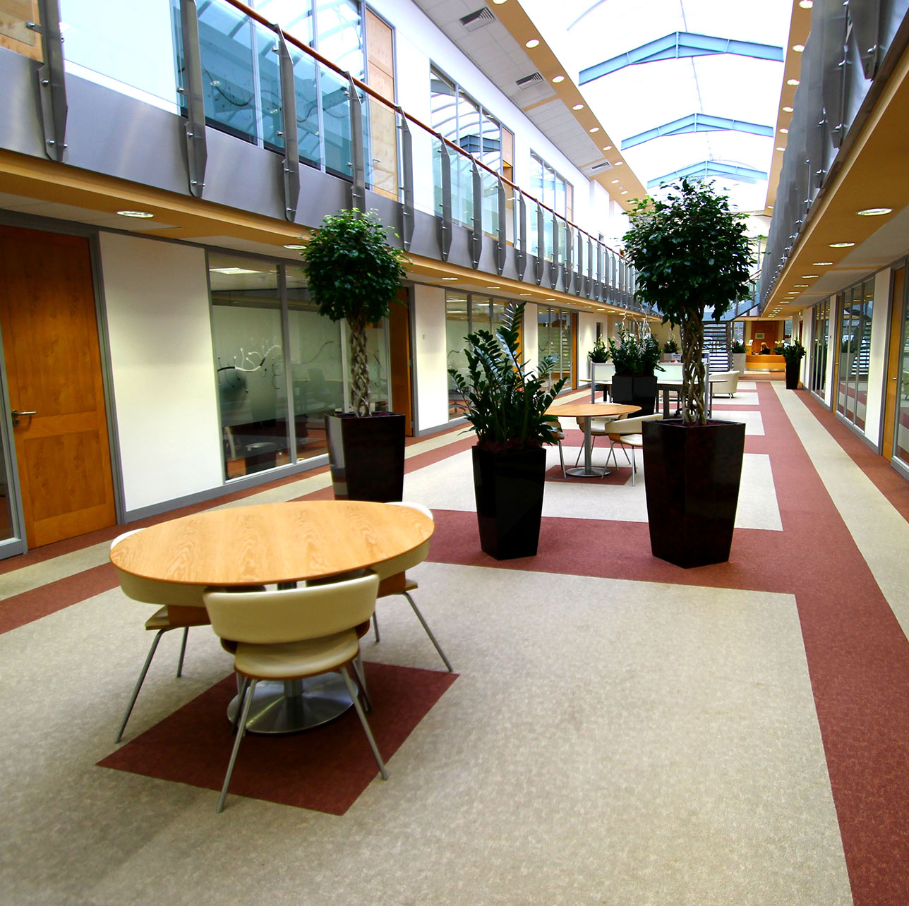 Carrwood park atrium