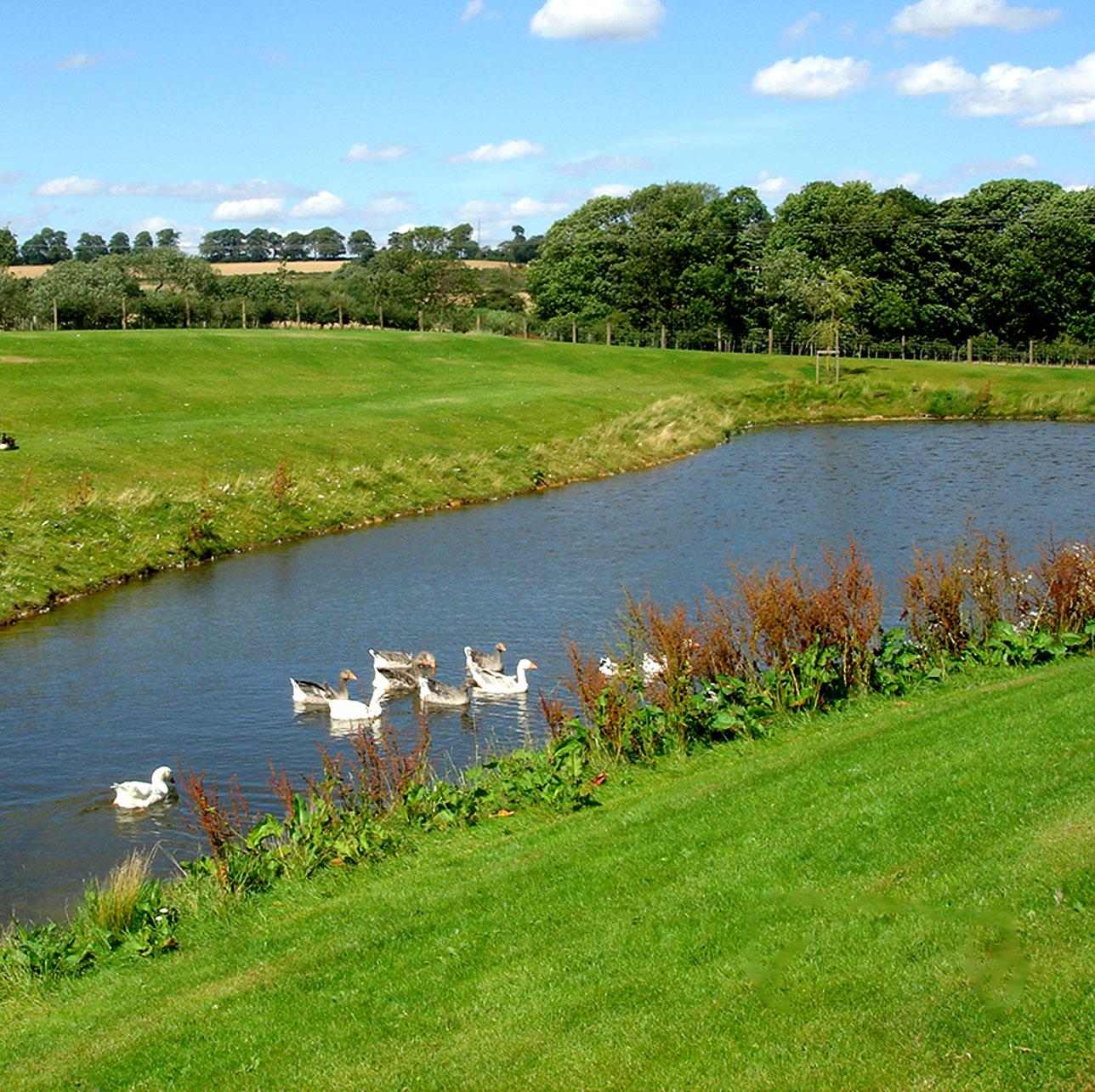 Carrwood park grounds
