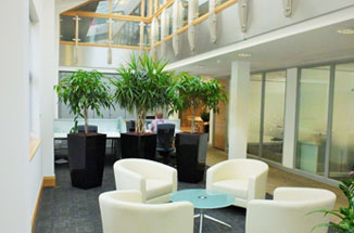 Bespoke office and meeting space